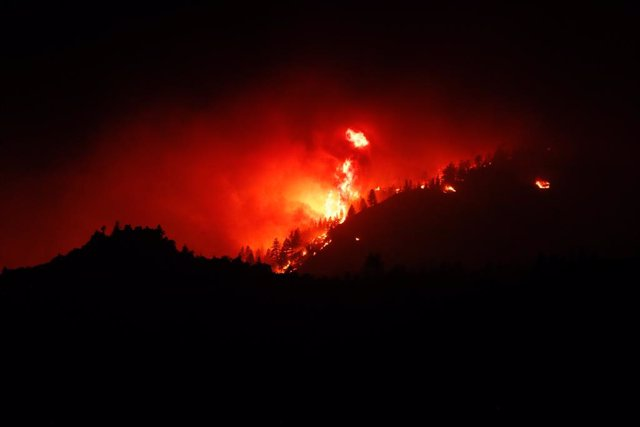 09 July 2021, US, Beckwourth: Trees burn as the Beckwourth Complex wildfire approaches highway 395 in the night. Photo: Ty Oneil/SOPA Images via ZUMA Wire/dpa