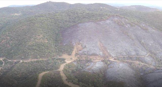 Zona afectada por el fuego en Villaviciosa.