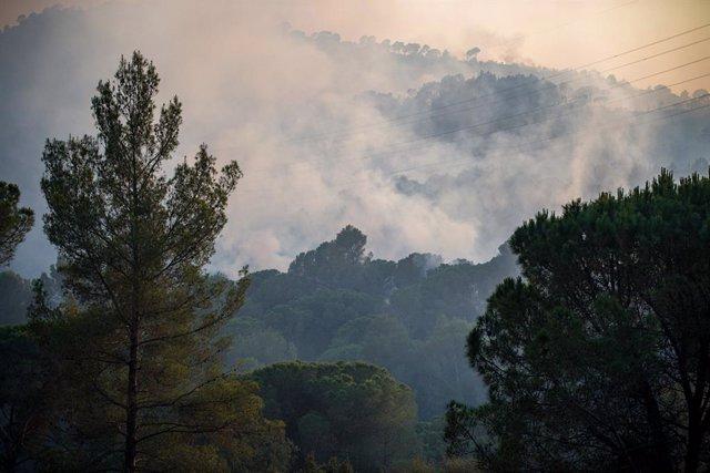 L'incendi a Castellví de Rosanes (Barcelona) afecta a la Serra de l?Ataix, a 13 de juliol.