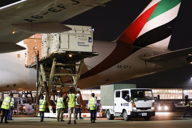 Haneda history-making: the first full cargo load of horses ever to land in Tokyo's Haneda airport ready for the Tokyo 2020 Olympic Games Equestrian competitions.  FEI/Yusuke Nakanishi