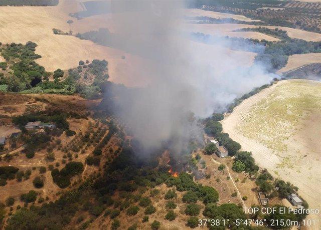 Incendio declarado en Cantillana