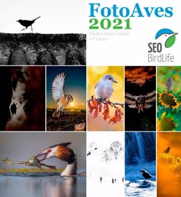 Cartel promocional del concurso fotográfico de SEO/BirdLife