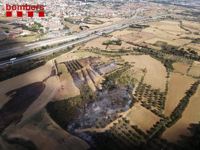 Incendi de vegetació agrícola a Vilafant (Girona) causat per l'espurna d'una serra radial, el 17 de juliol de 2021.