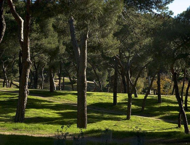 Archivo - Imágen de archivo de la Dehesa de la Villa, en el distrito madrileño de Moncloa-Aravaca