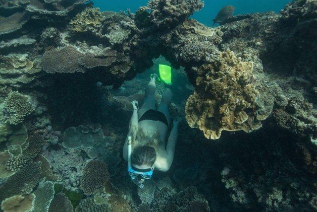 Gran Escull de Coral
