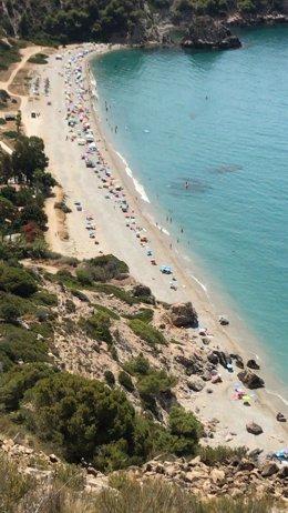 Playa del Cañuelo en los acantilados del Paraje Natural de Maro-Cerro Gordo, en Nerja (Málaga)