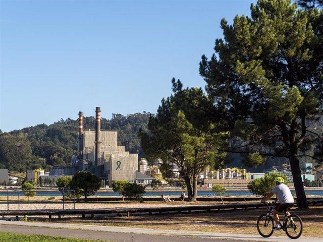 Archivo - Aenor certifica la calidad ambiental de Ence Pontevedra