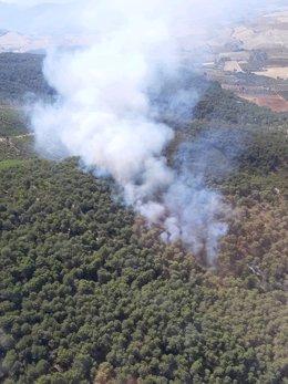 Incendio de Montellano