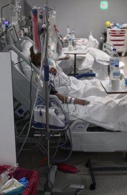 Archivo - Un enfermo en una cama del Hospital de Emergencias Isabel Zendal, Madrid (España),