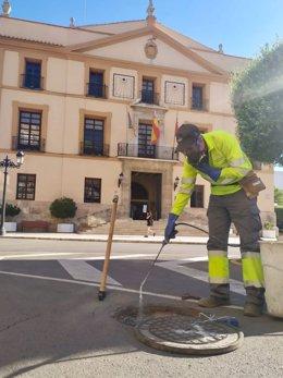 Control de plagas en Paterna