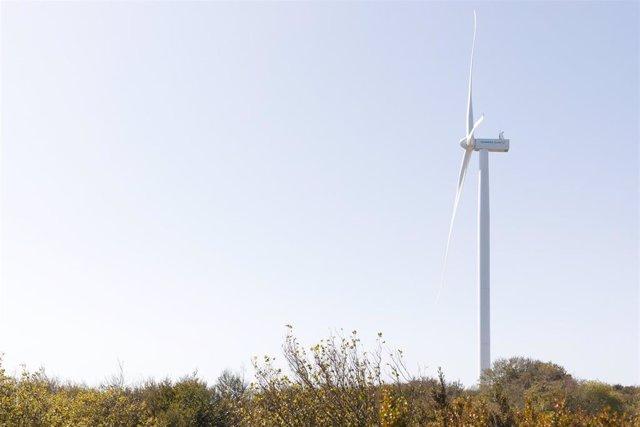 Archivo - Turbina eólica de Siemens Gamesa SG 5.0-132