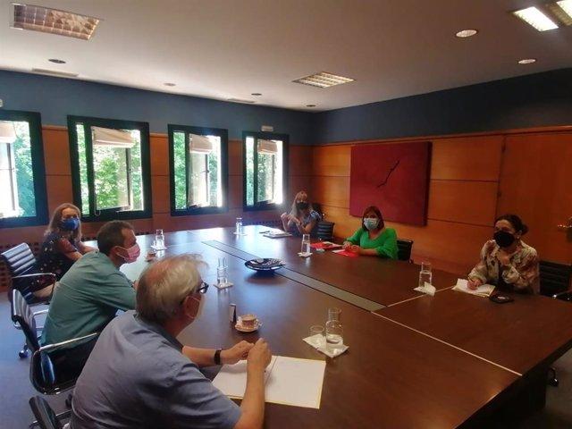 Reunión de la Comisión de Seguimiento de los Acuerdos entre FSA-PSOE e IU de Asturias