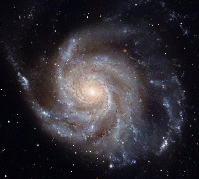 Una imagen de Messier 101, la Galaxia Molinillo, hecha con el Telescopio Espacial Hubble. Los grupos de color azul brillante en los brazos espirales son sitios de formación estelar reciente.