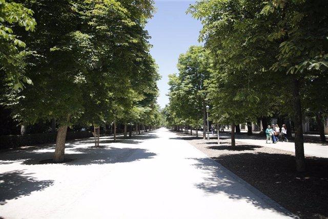 Archivo - Imagen de recurso del un paseo con árboles y vegetación en el Parque del Retiro de Madrid.