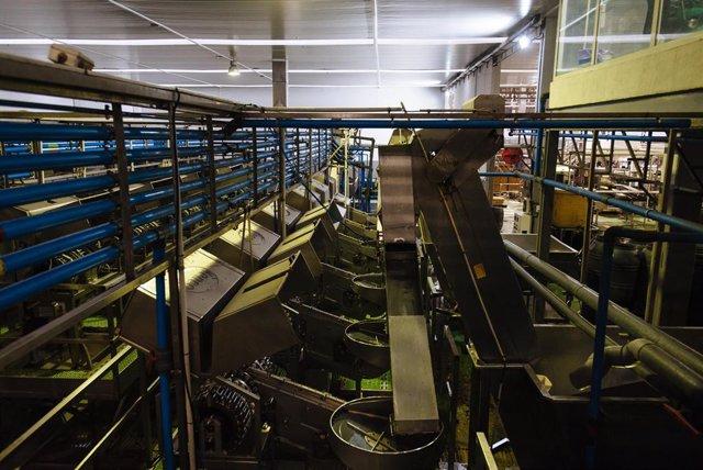 Archivo - La Junta invierte 208 millones en instalaciones y maquinaria más eficientes