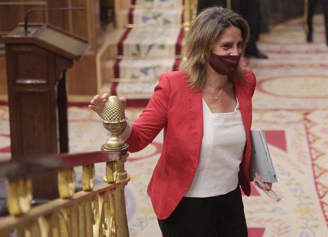 La vicepresidenta tercera y ministra para la Transición Ecológica y el Reto Demográfico, Teresa Ribera, a su llegada a una sesión plenaria en el Congreso
