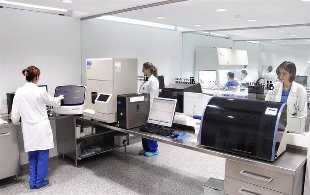 Archivo - Investigadores de Instituto Bernabeu desarrollan un algoritmo de Inteligencia Artificial para predecir alteraciones cromosómicas en el embrión antes de una FIV