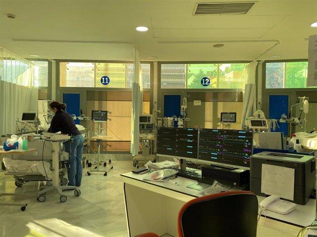 Archivo - El Hospital Regional de Málaga