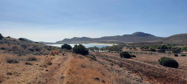 Archivo - Playa de Genoveses, en Cabo de Gata (Almería)