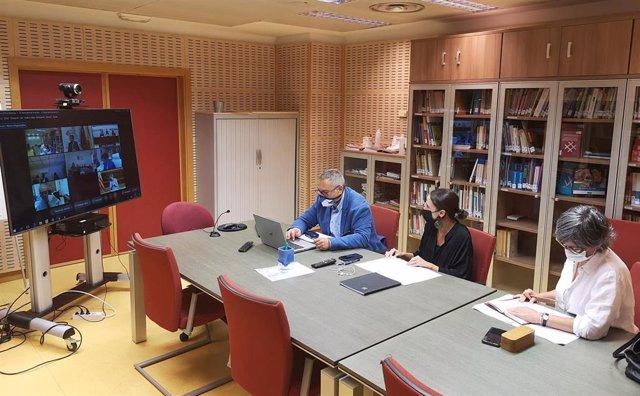 Reunión telemática de la Conferencia Sectorial de Vivienda