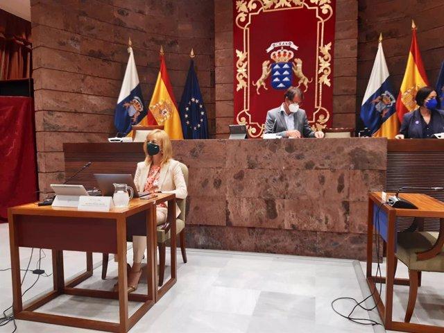 La presidenta del Colegio Oficial de Enfermería de Las Palmas, Rita Mendoza