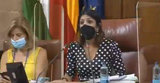 La presencia de una rata en el Parlamento de Andalucía provoca un revuelo entre los diputados durante el Pleno