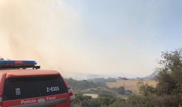 Incendio forestal Reserva Natural Vedado de Eguaras,  en Valtierra.