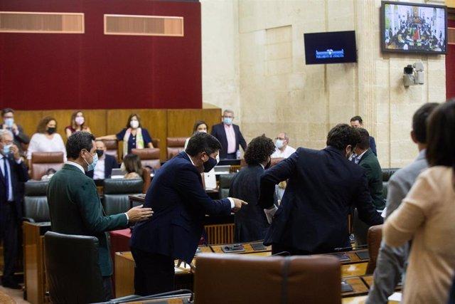 Interrupción del pleno del Parlamento por la irrupción de una rata