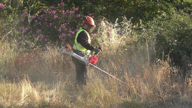Tareas de desbroce para evitar incendios en Almonaster la Real.
