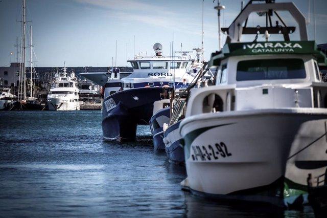 Archivo - Arxiu - Vaixells de pesca a Tarragona