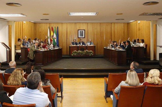 Archivo - El pleno de Mairena