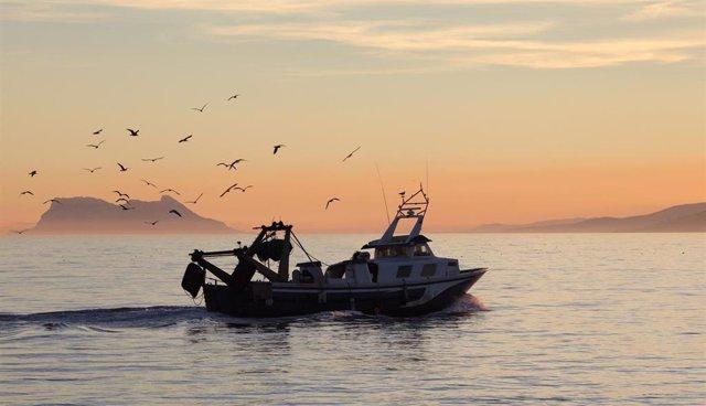 Archivo - Pesquero frente a las costas de Andalucía