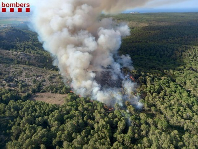 Los Bombers de la Generalitat  trabajan en un incendio de vegetación forestal en el macizo del Montgrí (Girona)