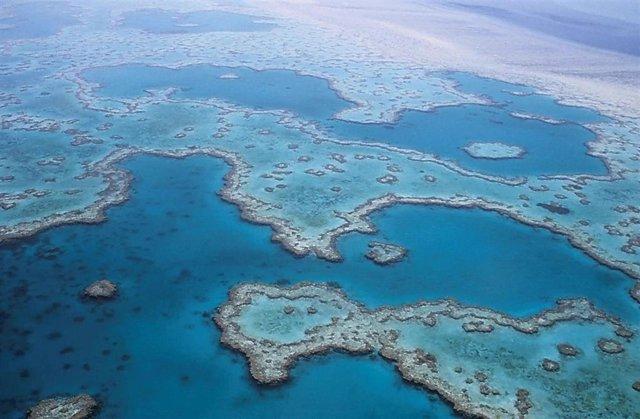 Archivo - La Gran Barrera de Coral australiana