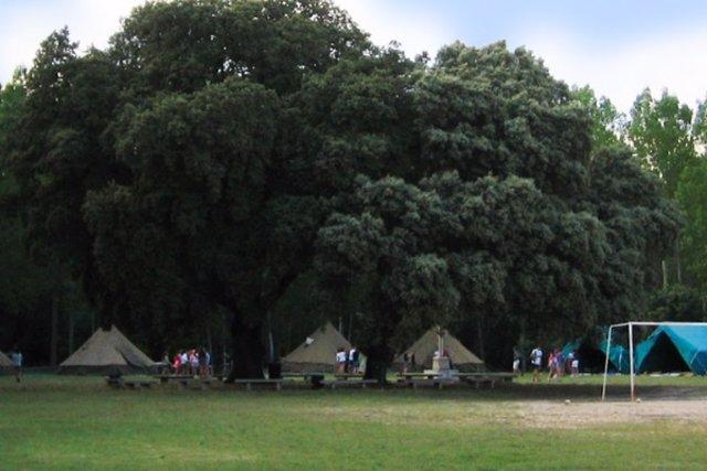 Campamento en La Vid (Burgos)