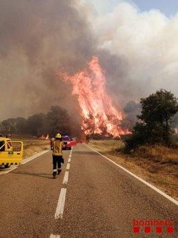 El incendio en Santa Coloma de Queralt (Tarragona) obliga a confinar Bellprat (Barcelona)