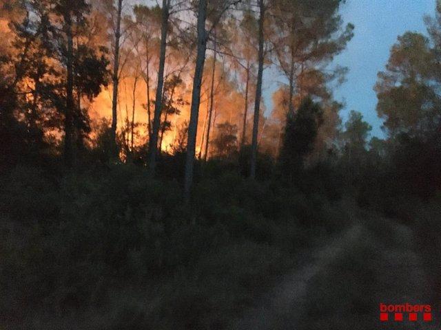 Imatge de l'incendi forestal a Ventalló (Girona)