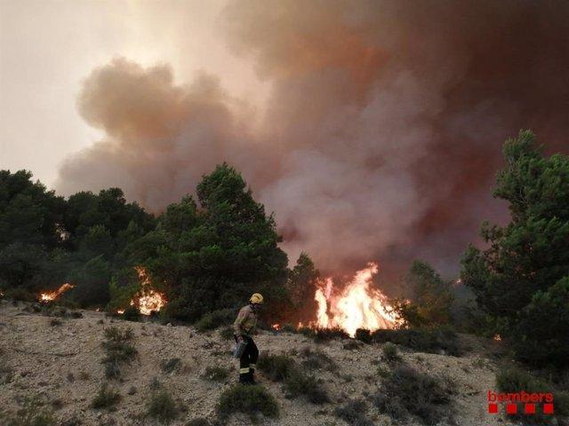 Imatge del foc de Santa Coloma de Queralt (Tarragona), que ha cremat unes 1.200 hectàrees