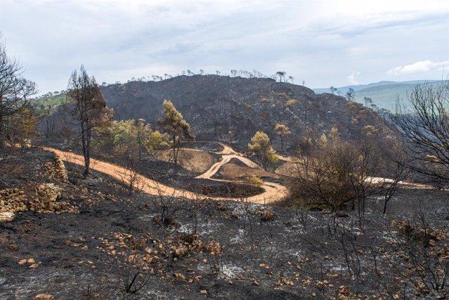 Santa Coloma de Queralt després de l'incendi