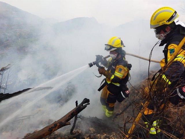 Extinguen el incendio forestal en Andratx tras quemar 0,26 hectáreas de pinar
