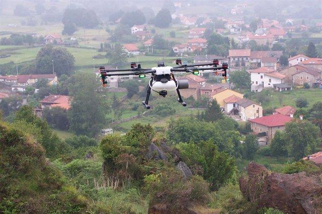 Archivo - Servicio de drones para aplicación de productos fitosanitarios en Cabárceno para control de plumeros.