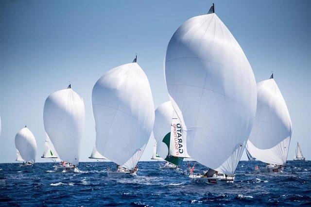 La flota de J80 durante la edición de 2019 de la Copa del Rey MAPFRE de vela