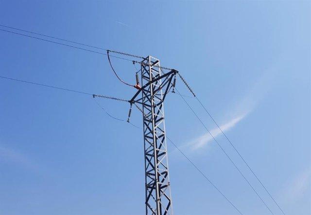 Archivo - Endesa adecua seis líneas eléctricas del Baix Camp (Tarragona) para proteger a la avifauna