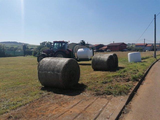 Zona rural, PAC, agricultura, ganadería.