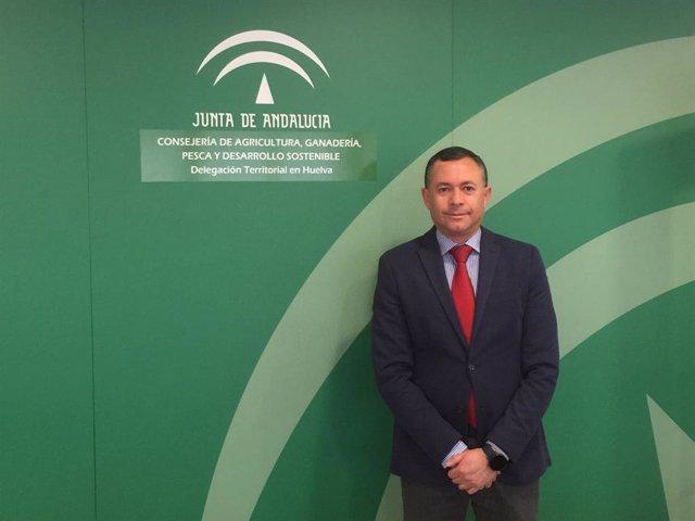 El delegado de Desarrollo Sostenible de la Junta en Huelva, José Enrique Borrallo.