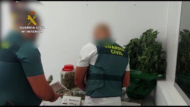 La Guardia Civil interviene la droga localizada en el cuarto de aperos