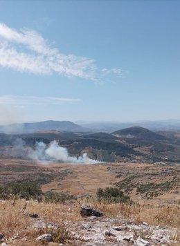 La columna de humo sobre el incendio forestal declarado en Cabra.