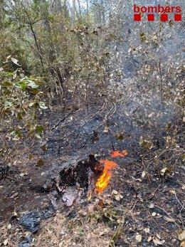 Els Bombers apaguen el foc que ha reavivat en Sant Coloma de Querealt (Tarragona)