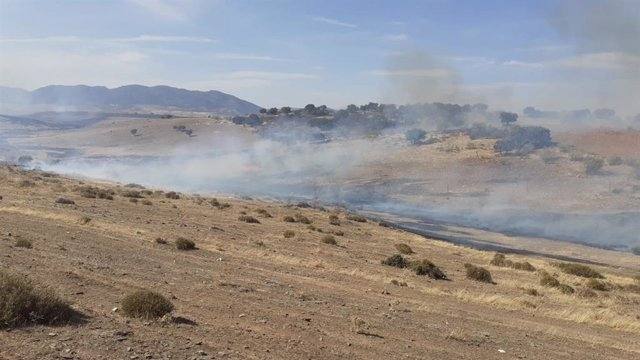 Humo del incendio forestal en Belalcázar.