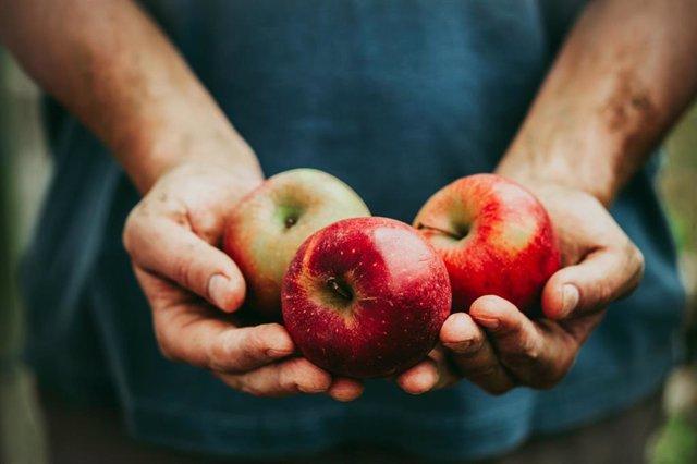 Archivo - Manzanas. Fruta